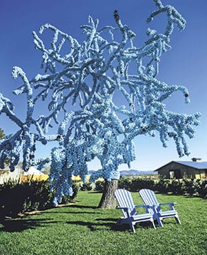 Cornerstone Place, Sonoma, California: Claude Cormier's Blue Tree, a dead Monterey pine covered in blue plastic balls, became the roadside signature of the new garden festival