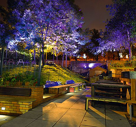 • The 'dancing trees' are a feature of the new-look Brel in Glasgow.