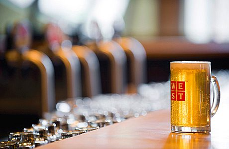 """The beer category is said to be """"evolving rapidly"""" as consumers are """"discovering quality beer""""."""
