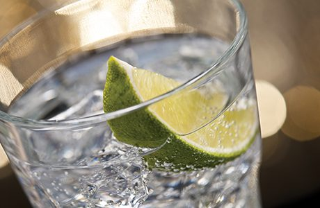 033gin and tonic