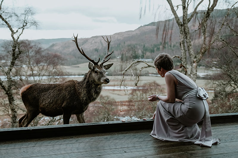 Bride and stag
