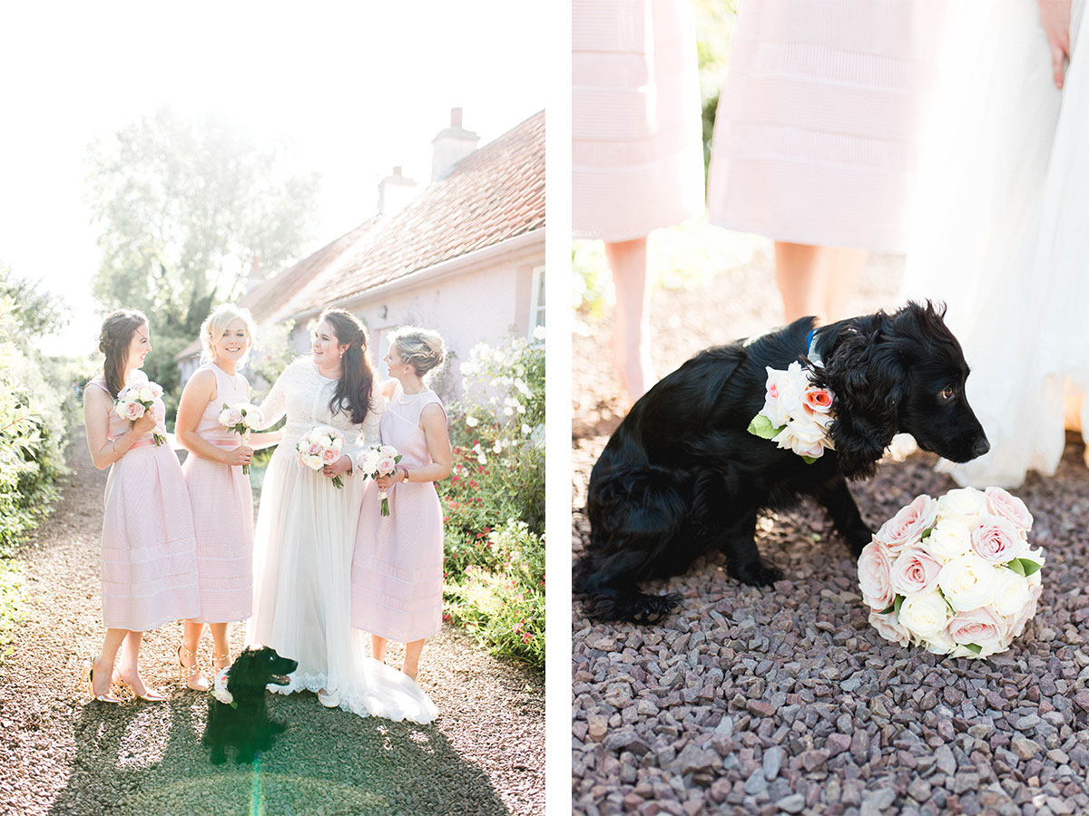 bride-and-bridesmaids-in-pastel-pink-dresses-and-dog-wearing-floral-collar