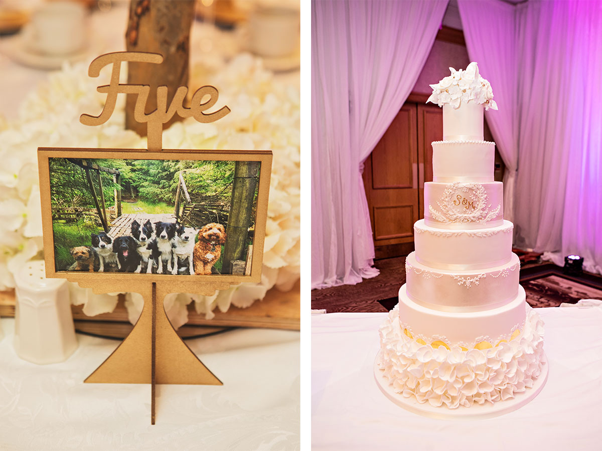 dog-table-numbers-and-tall-ivory-wedding-cake