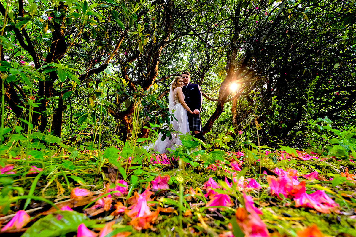 field-with-pink-flowers-and-bride-and-groom