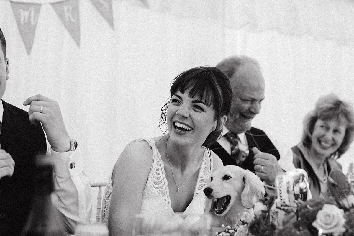 dog-sitting-on-bride's-lap-during-speeches