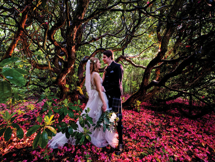 bride-and-groom-under-tree-with-pink-flowers