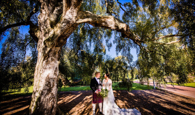 _bride-and-groom-standing-under-tree