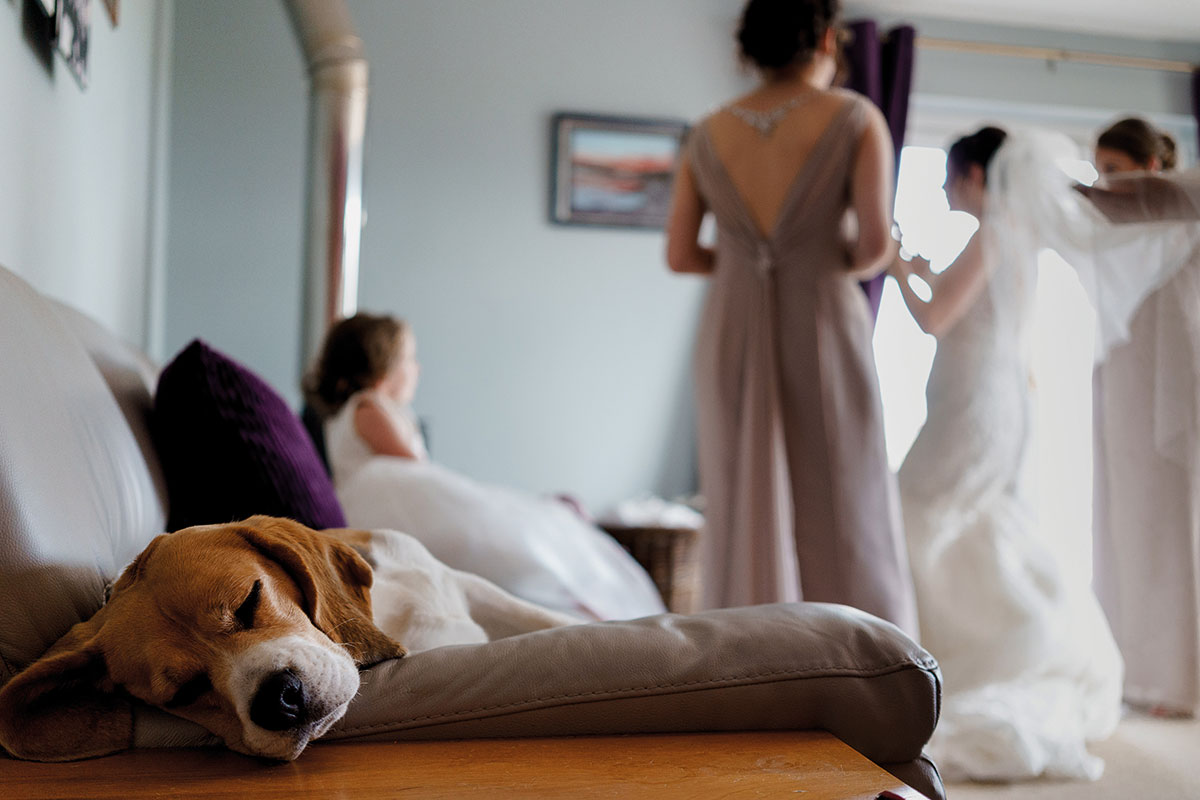 Isle-of-Lismore-Wedding-Photography-Barry-Robb-dog-sleeping-bride-getting-ready-in-background