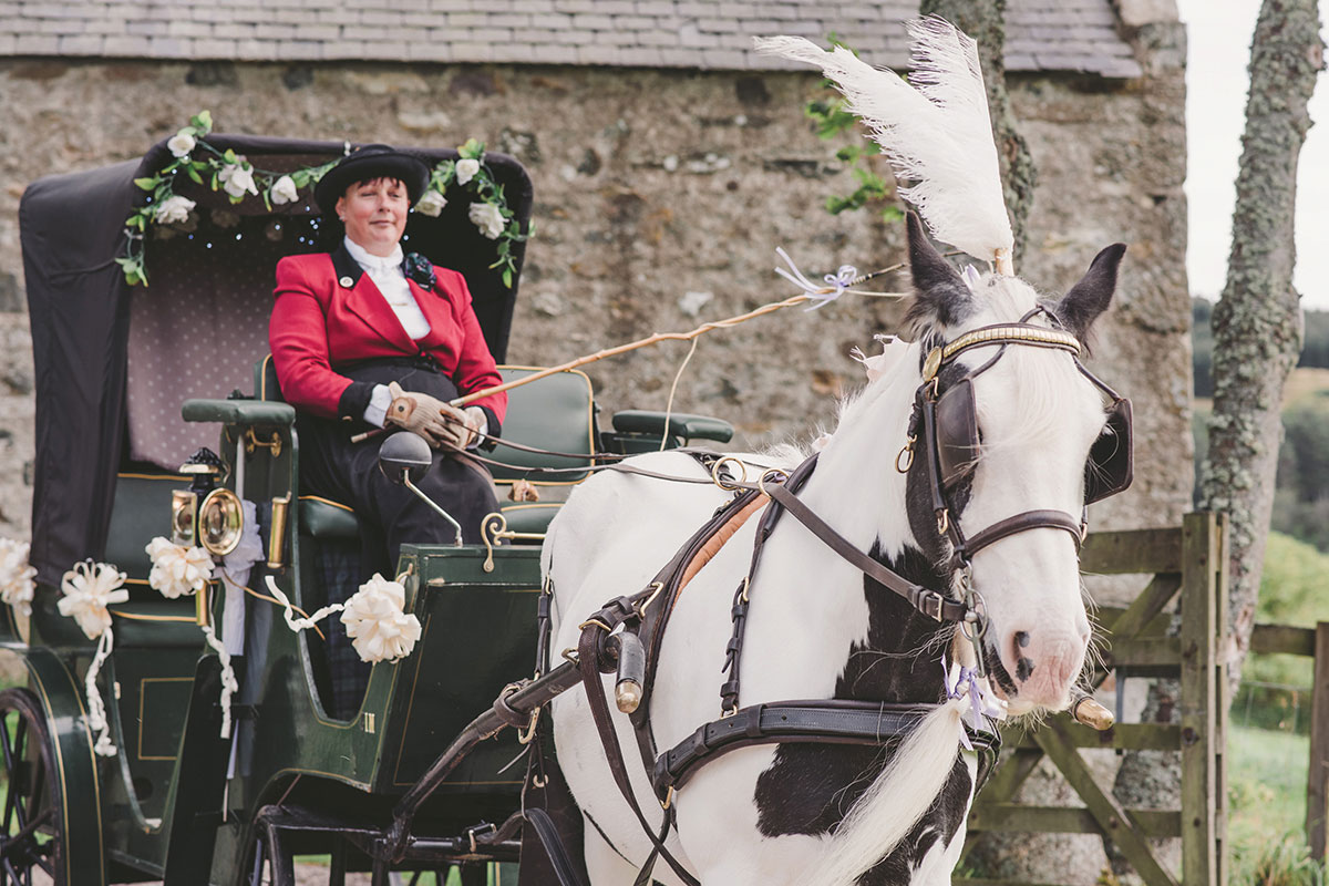 Carrbridge Carriage Driving wedding horse and carriage Zoe Rae Photography