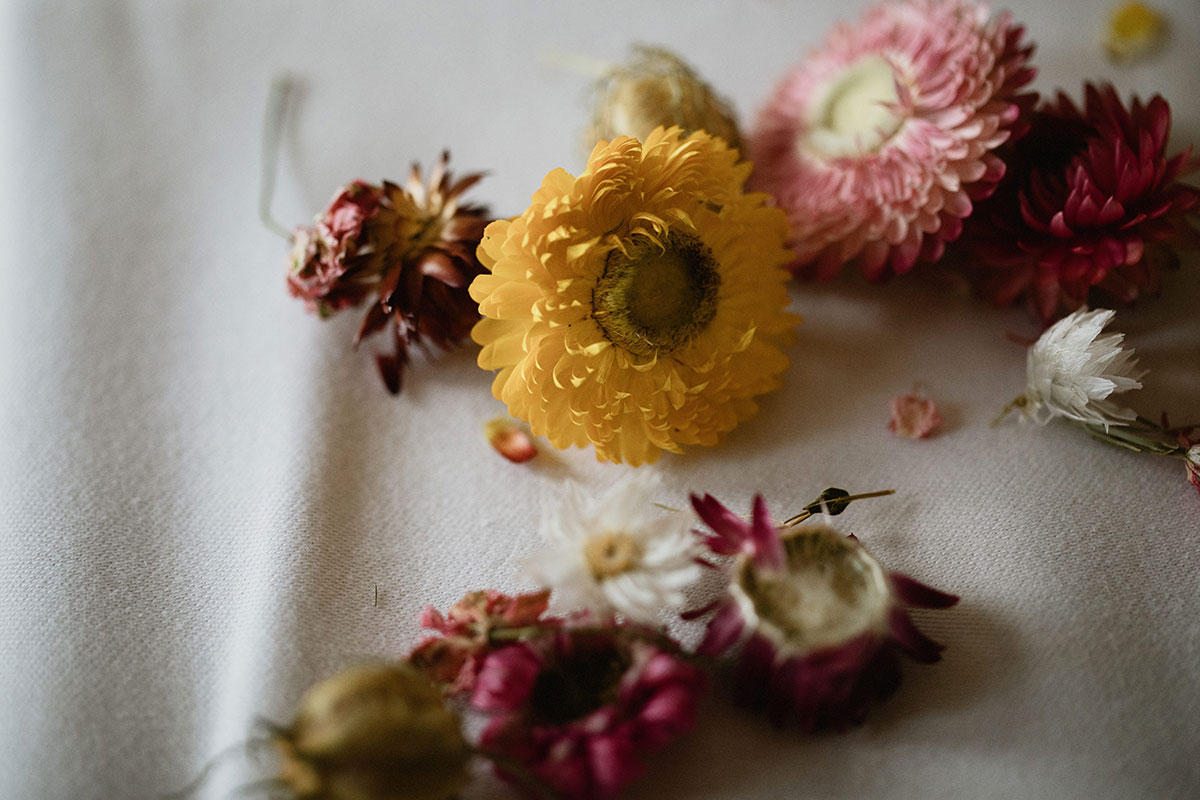 dried dahlias on a white tablecloth