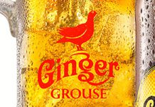 HISKY and whisky-linked drinks are often thought to be hard to sell to young adults. But Famous Grouse distributor Maxxium says it has had success with Ginger Grouse, its RTD aimed at 25-40 year-olds.