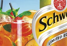 CCE's 1.75l bottle, designed specifically for c-stores, comes in a distinctive curved bottle that echoes the shape of Coke's classic glass bottle. Schweppes Summer Punch is designed for adults looking for a refreshing, fruity summer thirst-quencher.