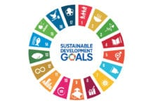 sustainable goals circular icon