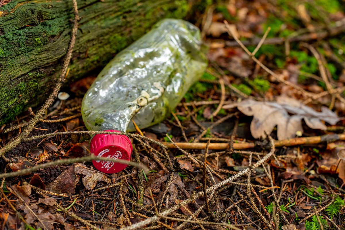 Coca Cola bottle - litter